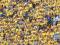 La afición opina: el 95 % rechaza jugar de celeste el derbi canario